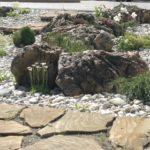 Альпинарий - сочетание камней и растительности