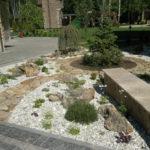 Каменистые сад 1