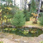 Малый пруд в пейзажном стиле