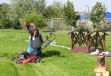 Услуги садовника, комплексный уход за участком