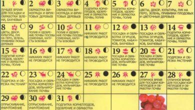 Photo of Лунный посевной календарь на 2018 год