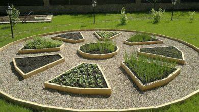 Photo of Зона сада и огорода