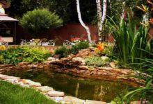 Photo of Место для водоема