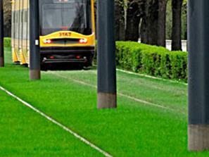 http://terrasa.com.ua/uploads/images/Landart/gazoni/special.jpg
